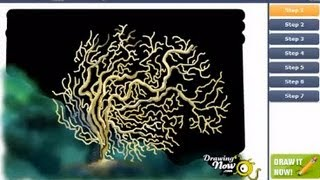 How to Draw a Coral
