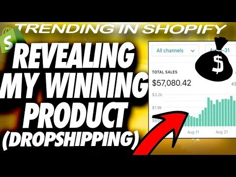 The SECRET Winning Product that will BLOW UP This Summer! | Dropshipping thumbnail