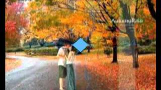 Reason - Autumn in my heart - Guitar - Nhu Tho.flv