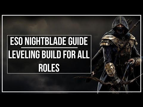 ESO Nightblade Leveling Build (All Roles)