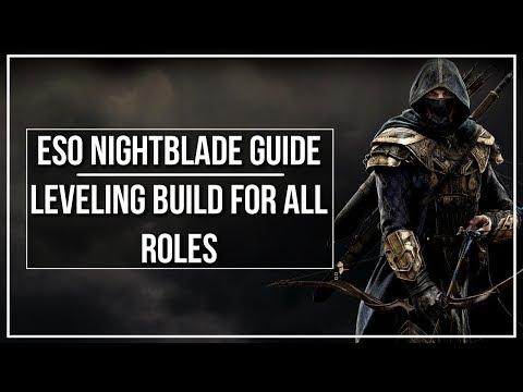 Elder Scrolls Online Best Rogue Build