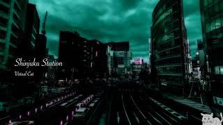 【VCDR-0027】Virtual Cat / Shinjuku Station