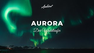 Der Waldläufer - Aurora [chillout relaxing meditation]