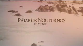 Pájaros Nocturnos - El Viento