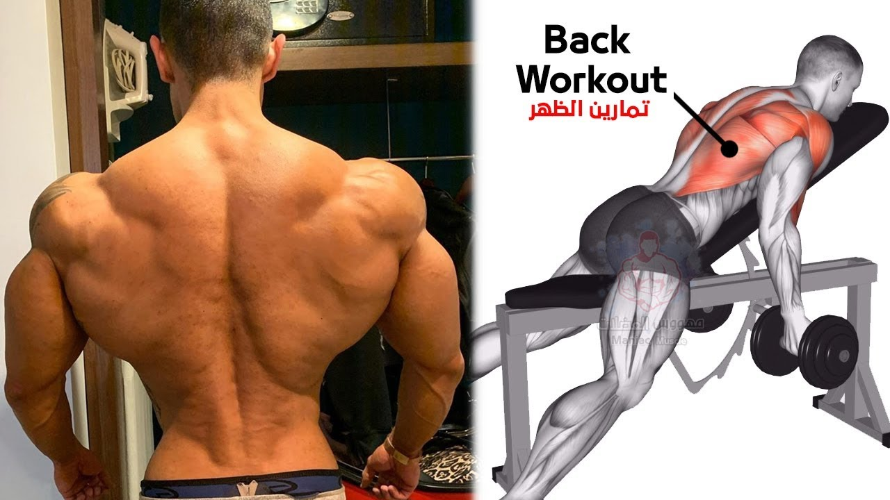 أفضل تمارين الظهر وزيادة عرض كمال الاجسام Back Workout For Mass Youtube Back Workout Men Abs And Cardio Workout Back Workout For Mass