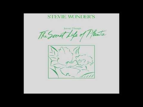 Stevie Wonder ~ Power Flower (432 Hz)