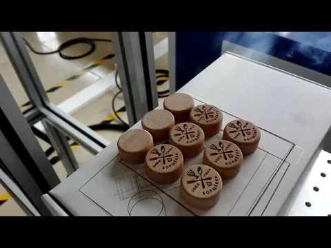 30w CO2 laser marking machine on wood bottle cap 1