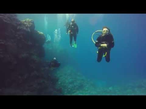 Matafonua dive day in Tonga - so amazing