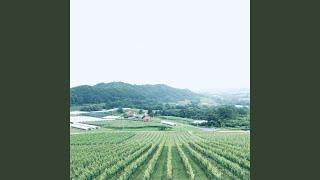 Provided to YouTube by TuneCore Japan 夢の丘 · Sayaka Morita 夢の丘...