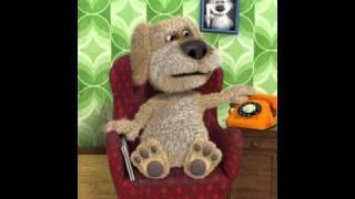 The n00bish Teddy Bear In History