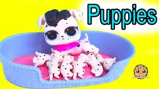 LOL Surprise Pets Dog Has Puppies !  Cookie Swirl C Toy Video thumbnail