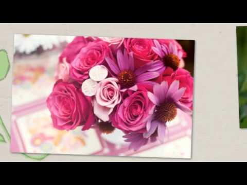 boldog névnapot anikó Boldog Névnapot Anikó!   videó képeslapküldés   YouTube boldog névnapot anikó