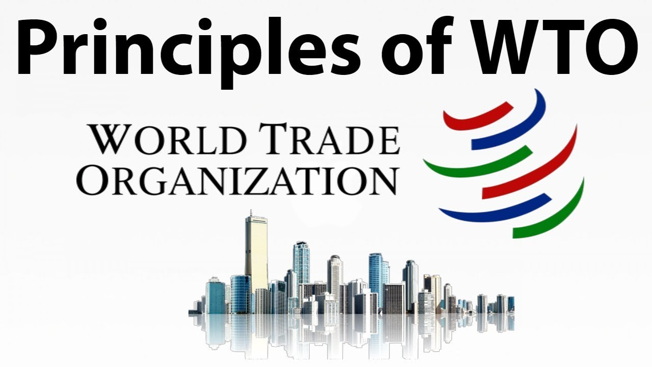 world trade organization principles The world fair trade organization-europe (wfto-europe) is the european branch of wfto, the worldwide network of fair trade organisations it is formed by around 90.