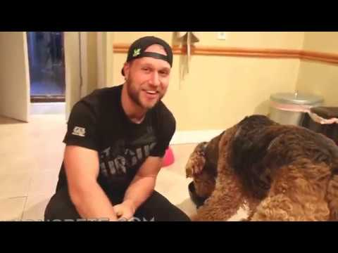 pranks funny|Funny Dogs Videos|Best Funny Videos