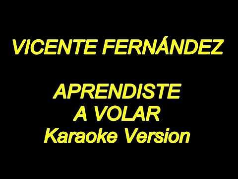 Vicente Fernandez - Aprendiste A Volar (Karaoke Lyrics) NUEVO!!