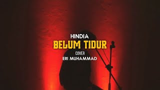 Hindia - Belum Tidur ft Sal Priadi (cover by Eri)