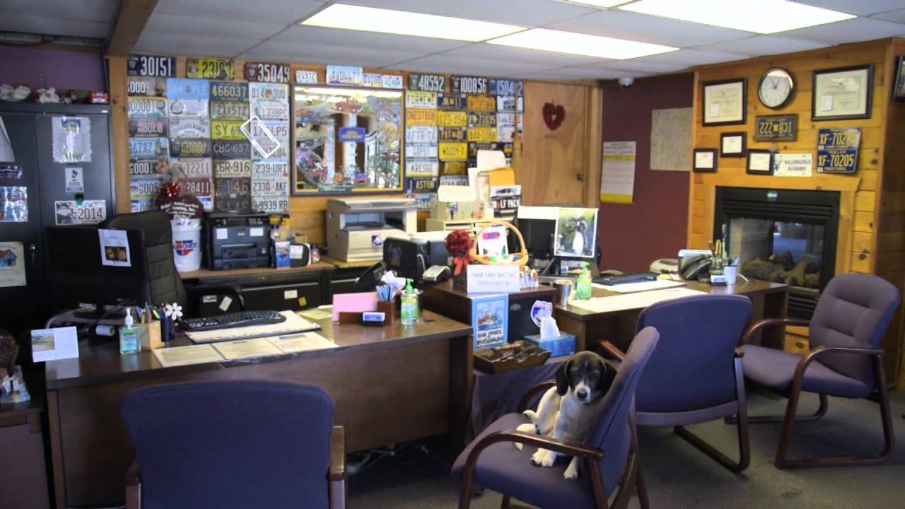 Kathys License Service