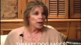 Chicago Dog Training: The Basic Of Therapy Dogs