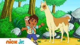 Гоу, Диего, Гоу! | Восхождение | Nickelodeon