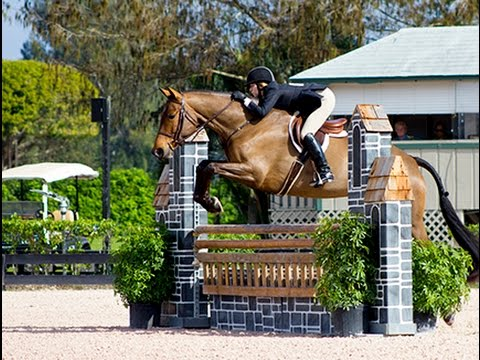 The Equestrian Capital of the World, Wellington, FL
