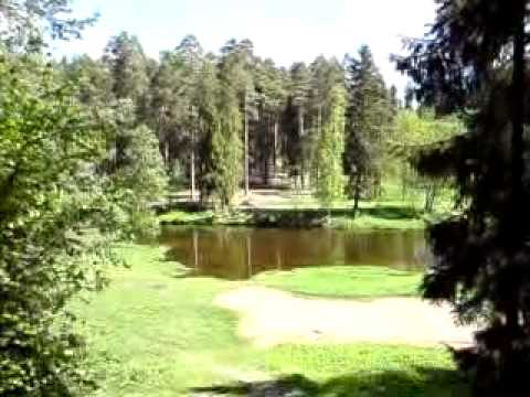 видео: Сиверская,р.Оредеж,Лялин луг,родник.