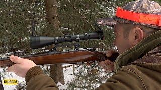 Uwaga! polowanie (UWAGA! TVN)
