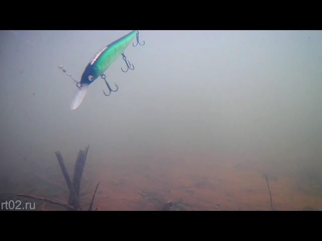 Копия воблера Megabass Vision Oneten Plus1 от BearKing (подводная съемка)