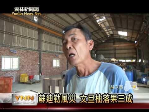 風災斗六文旦落果三成  柚子加工品減農損