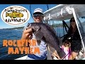Crazy Buzz Bomb Black Rockfish Fishing Action