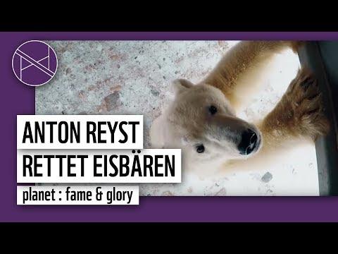 Hudson Bay (Kanada) Eisbären retten mit Anton Reist | WWF Deutschland