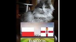EURO 2016  Polska – Irlandia Północna  kot typuje wynik meczu,