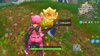 """Follow the treasure map found in Pleasant Park"" Location Week 7 Challenges in Fortnite"