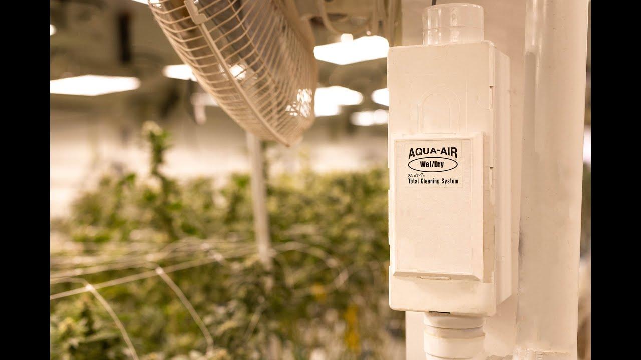 Aqua-Air Medical Cultivation Kit