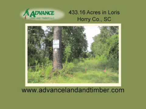 Land for Sale Horry County Couth Carolina