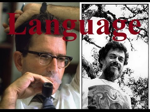 The Meaning of Meaning, Reality, Cognition and Linguistics (Noam Chomsky, Terence Mckenna)