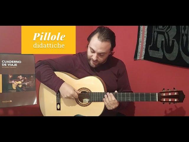 Il Rasgueado sulla chitarra flamenco - Giovanni Cigliano | Salvador Cortez