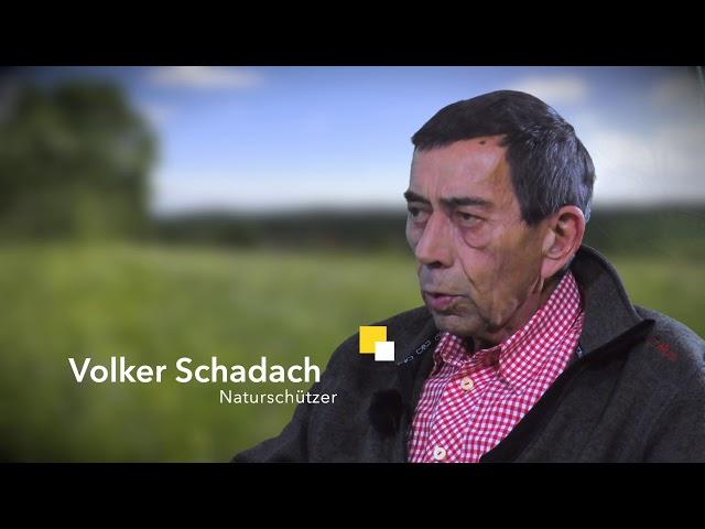 Artenschutz - Eine Biotopfläche der Natur- und Umwelthilfe Goslar e.V.