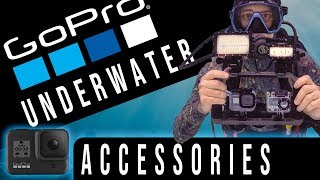 10 Best Gopro Hero 8 Underwater Video Accessories from Amazon