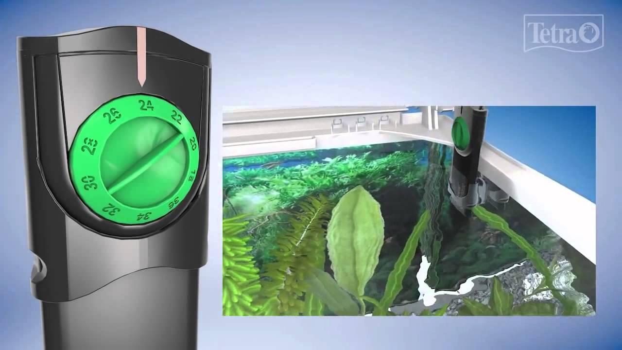 Amazon.com : Tetra 26446 Submersible Aquarium Heater, 100-Watt ...