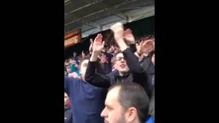 Tango man leading 3,800 Sheffield Wednesday fans into