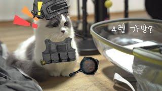 귀여운 고양이 이동장 우주선 가방 언박싱