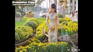 TIEN GIANG QUE HUONG TOI_HOANG LAN ( LILY'PICTURES ).flv
