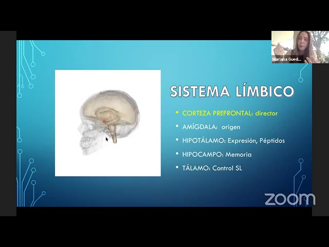 Neurociencia y salud mental