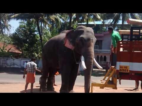 Thrikkadavoor Sivaraju In kodimoottil parippally