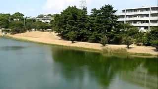 猛暑の中、西宮、神戸の火垂るの墓の舞台を歩いてみました.