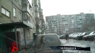 Кошка сломала дворник на автомобиле, пытаясь забраться на крышу