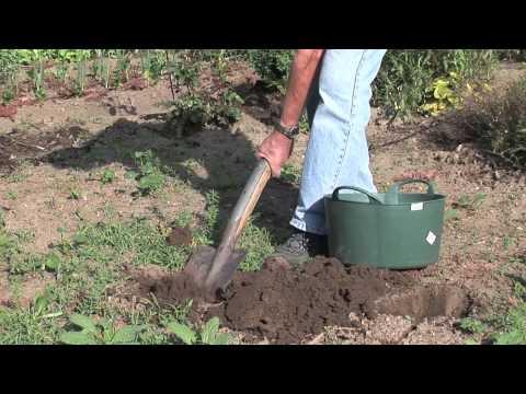Einfache Bodenanalyse - Der Grüne Tippиз YouTube · Длительность: 4 мин20 с