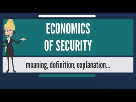 What is ECONOMICS OF SECURITY? What does ECONOMICS OF SECURITY mean? ECONOMICS OF SECURITY meaning