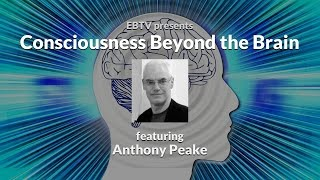 Exploring the Nature of Consciousness Beyond the Brain