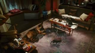 Кошки против собак: Месть Китти Галор (2010)